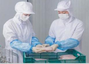 食品製造会社